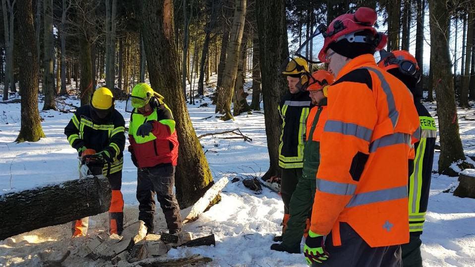 Training an der Motorsäge - Feuerwehr Meinerzhagen führt TH-Wald durch