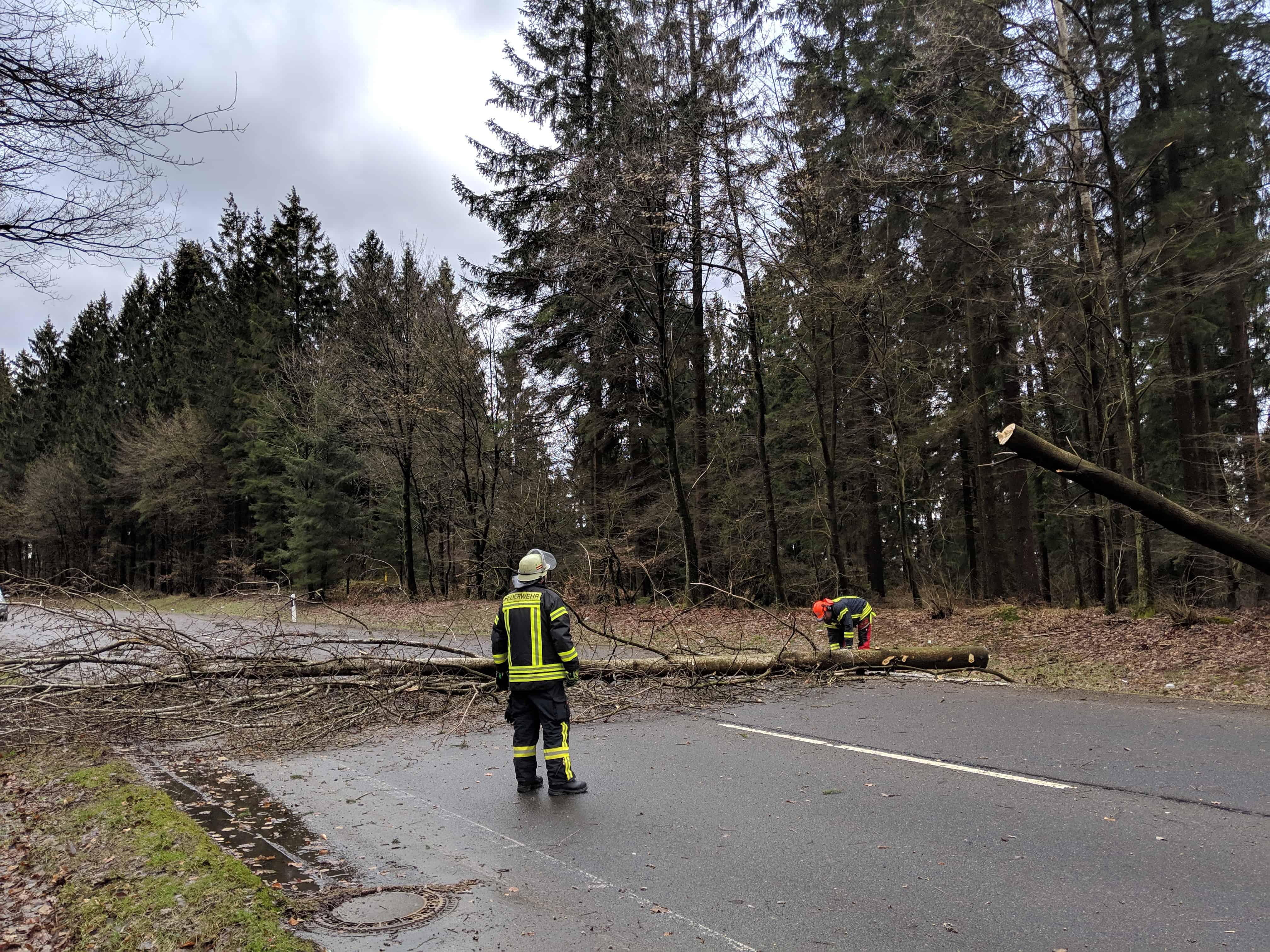 2019-03-10 Sturm Ebehardt 03