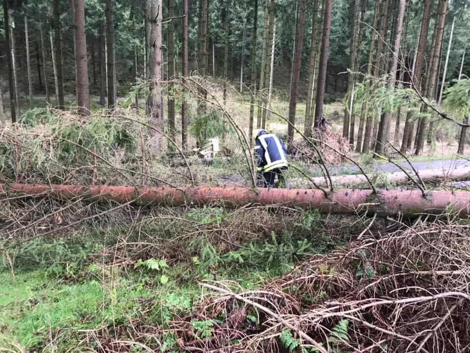 Sturmtief Sabine trifft Meinerzhagen nicht so hart wie erwartet