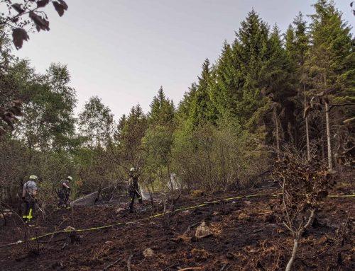 Feuerwehr Meinerzhagen bekämpft großen Waldbrand